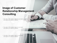 Image Of Customer Relationship Management Consulting Ppt PowerPoint Presentation Show Objects