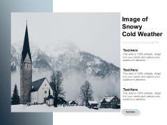 Image Of Snowy Cold Weather Ppt PowerPoint Presentation Layouts Format Ideas