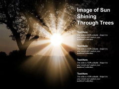 Image Of Sun Shining Through Trees Ppt PowerPoint Presentation Infographic Template Graphics
