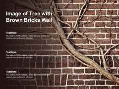 Image Of Tree With Brown Bricks Wall Ppt PowerPoint Presentation Ideas Sample