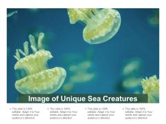 Image Of Unique Sea Creatures Ppt PowerPoint Presentation Pictures Outline