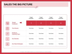 Implementing Compelling Marketing Channel Sales The Big Picture Ppt PowerPoint Presentation Professional Layout Ideas PDF