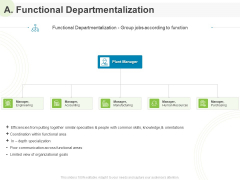 Implementing Human Resources HR Best Practices Strategy A Functional Departmentalization Ppt Infographics Skills PDF