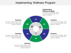 Implementing Wellness Program Ppt PowerPoint Presentation Outline Backgrounds Cpb