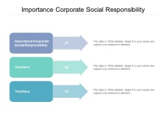 Importance Corporate Social Responsibility Ppt PowerPoint Presentation Slides File Formats Cpb