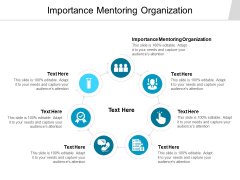 Importance Mentoring Organization Ppt PowerPoint Presentation Summary Model Cpb