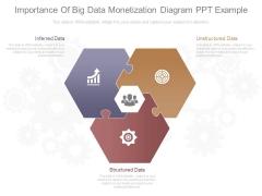 Importance Of Big Data Monetization Diagram Ppt Example