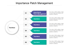 Importance Patch Management Ppt PowerPoint Presentation Infographic Template Show Cpb