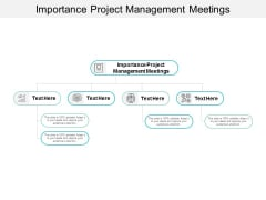 Importance Project Management Meetings Ppt PowerPoint Presentation Ideas Outfit Cpb