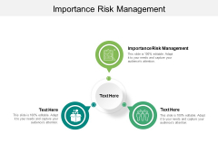 Importance Risk Management Ppt PowerPoint Presentation Layouts Show Cpb