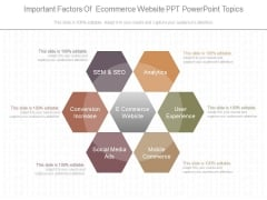 Important Factors Of Ecommerce Website Ppt Powerpoint Topics