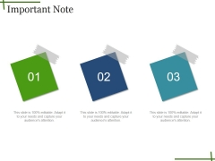 Important Note Ppt PowerPoint Presentation Layouts Themes