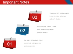 Important Notes Ppt PowerPoint Presentation Gallery Graphics