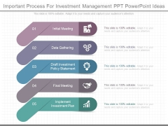 Important Process For Investment Management Ppt Powerpoint Ideas