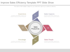 Improve Sales Efficiency Template Ppt Slide Show