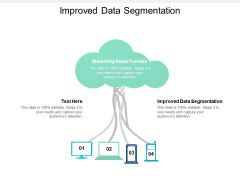 Improved Data Segmentation Ppt PowerPoint Presentation Styles Aids Cpb