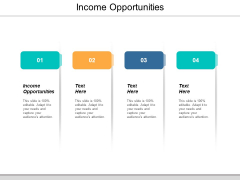 Income Opportunities Ppt PowerPoint Presentation Visual Aids Pictures Cpb