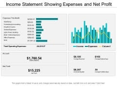 Income Statement Showing Expenses And Net Profit Ppt PowerPoint Presentation Slides Example