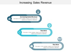 Increasing Sales Revenue Ppt PowerPoint Presentation Show Professional Cpb