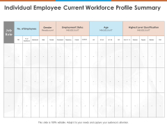 Individual Employee Current Workforce Profile Summary Ppt PowerPoint Presentation Layouts Templates PDF