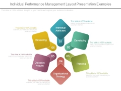 Individual Performance Management Layout Presentation Examples