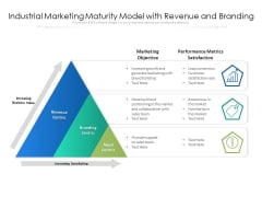 Industrial Marketing Maturity Model With Revenue And Branding Ppt PowerPoint Presentation Gallery Pictures PDF