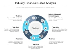 Industry Financial Ratios Analysis Ppt PowerPoint Presentation File Portrait Cpb