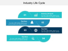 Industry Life Cycle Ppt PowerPoint Presentation File Topics Cpb