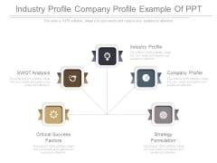Industry Profile Company Profile Example Of Ppt