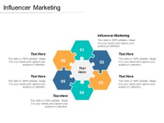 Influencer Marketing Ppt PowerPoint Presentation Professional Backgrounds Cpb