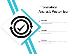 Information Analysis Vector Icon Ppt PowerPoint Presentation Icon Model PDF