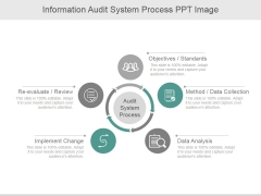Information Audit System Process Ppt PowerPoint Presentation Ideas