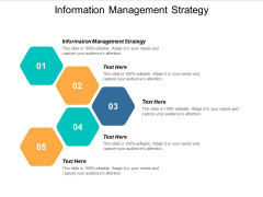 Information Management Strategy Ppt PowerPoint Presentation Portfolio Introduction Cpb