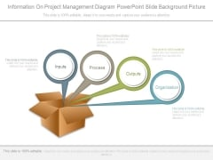 Information On Project Management Diagram Powerpoint Slide Background Picture