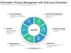 Information Process Management With Data Loss Prevention Ppt PowerPoint Presentation Icon Example File PDF