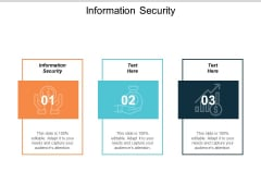 Information Security Ppt PowerPoint Presentation Icon Show Cpb