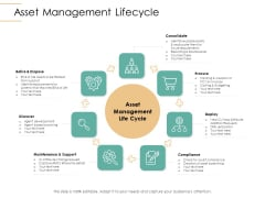 Infrastructure Strategies Asset Management Lifecycle Ppt Show Gridlines PDF