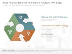Initial Analysis External And Internal Analysis Ppt Slides
