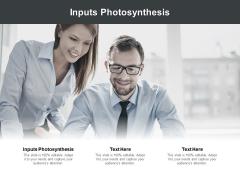 Inputs Photosynthesis Ppt PowerPoint Presentation Portfolio Example Cpb Pdf