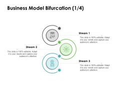 Instruction Manuals Business Model Bifurcation Stream Three Ppt Infographic Template Objects PDF
