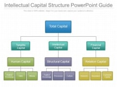 Intellectual Capital Structure Powerpoint Guide
