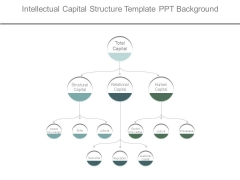 Intellectual Capital Structure Template Ppt Background
