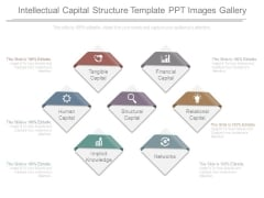 Intellectual Capital Structure Template Ppt Images Gallery