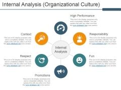 Internal Analysis Organizational Culture Ppt PowerPoint Presentation Icon Graphics
