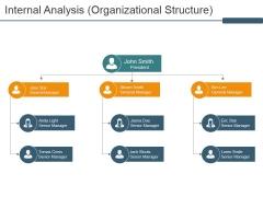 Internal Analysis Organizational Structure Ppt PowerPoint Presentation Gallery Tips
