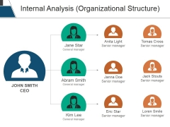 Internal Analysis Organizational Structure Ppt PowerPoint Presentation Model Slides