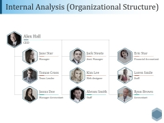 Internal Analysis Organizational Structure Ppt PowerPoint Presentation Professional Layouts