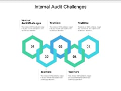 Internal Audit Challenges Ppt PowerPoint Presentation Outline Example File Cpb