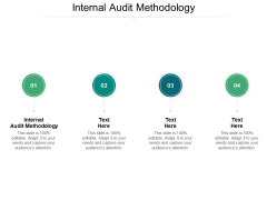 Internal Audit Methodology Ppt PowerPoint Presentation Show Graphics Example Cpb