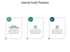 Internal Audit Practices Ppt PowerPoint Presentation Portfolio Smartart Cpb
